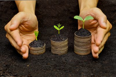 hands holding trees growing on coins / csr / sustainable development / economic growth / trees growing on stack of coins